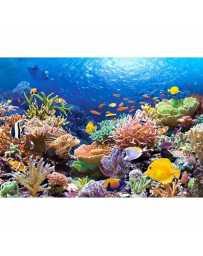Puzzle Peces de Arrecifes