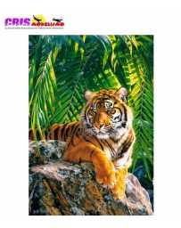 Puzzle Tigre de Sumatra 500 Piezas