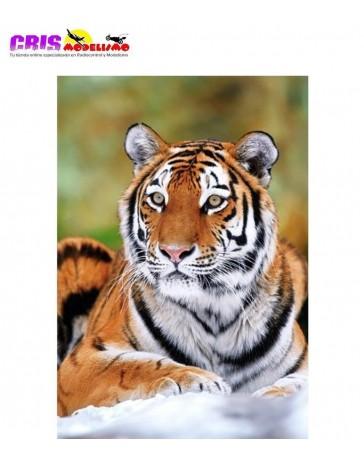 Puzzle Tigre de Siberia de 500 piezas