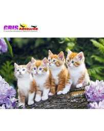 Puzzle Tripulación de Gatos