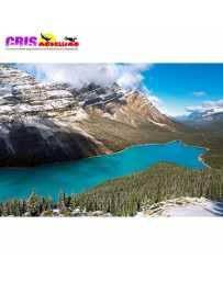 Puzzle Lago Peyto 1500 Piezas