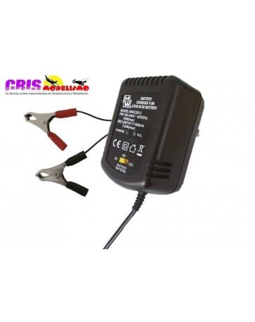 Recambio Cargador Baterias de Plomo 2V-6V-12V 600mAh