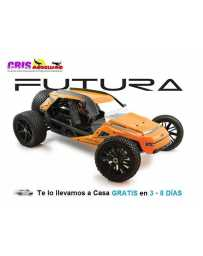 Coche FTX Futura 1/6 2WD Brushless Buggy