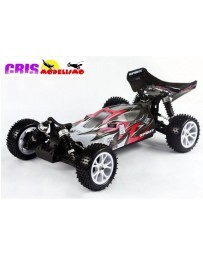 Coche VRX Spirit EBD 1/10 4WD Rosa Brushed Buggy RTR