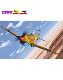 Maqueta Avión Tomahawk IIB Ace of African Front LE 1/48 Academy