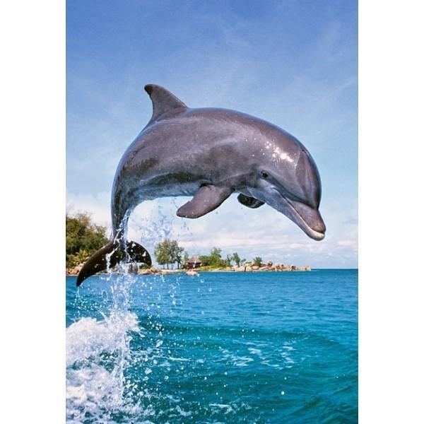 Puzzle Delfín de 500 piezas