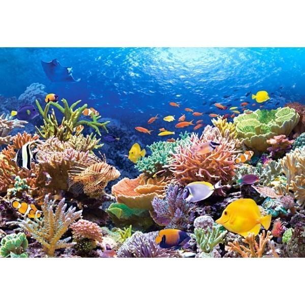 Puzzle Peces de los Arrecifes de Coral de 1000 piezas
