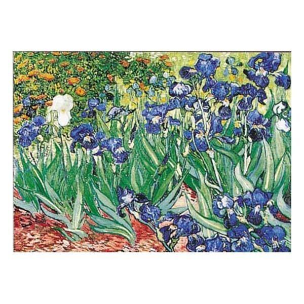 Puzzle Iris de 1000 piezas